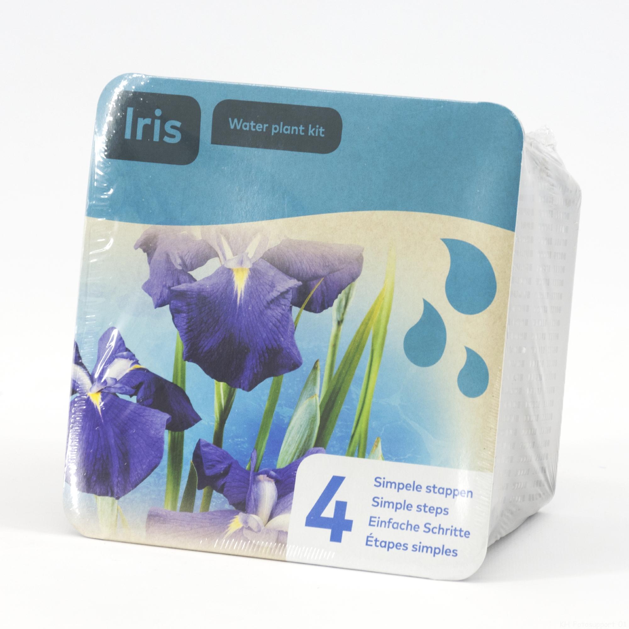 B 20925 Droogverpakking waterpl blauwe Iris 20180320120917